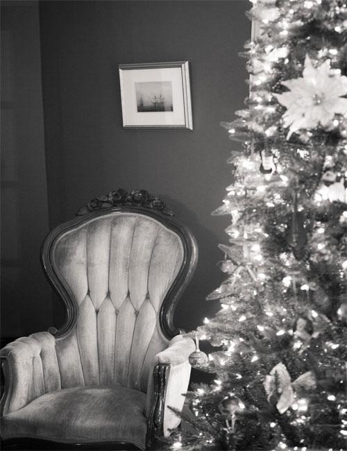 Charleston Christmas Decorations